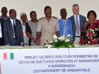 Projet de création d'un périmètre de 50 ha de cultures vivrières et maraîchères à NANGORIGOH (département de Sinémentiali) .