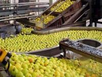 Compétitivité de l'Industrie Manufacturière Ivoirienne