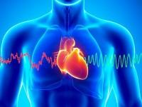 La prévention des maladies cardio-vasculaires chez la femme:Entretien avec le Docteur  Aboua Abebi, médecin conseil