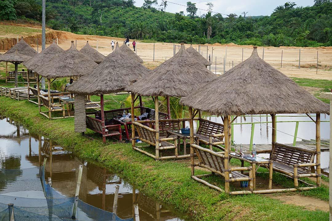 Côte d'Ivoire :Le Complexe FAMA BIO primé pour son expertise aux  Awards des Grandes entreprises régionales